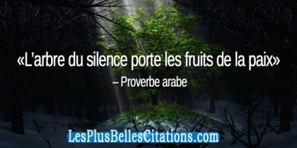Proverbes Arabes - photo 2